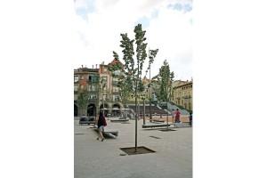 Krata ochronna KD77 kraty ochronne na drzewo do drzewa mała architektura miejska-3